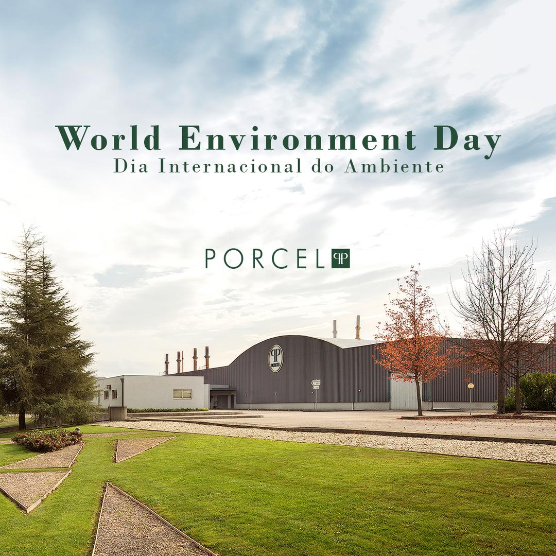 Dia Internacional do Ambiente 0